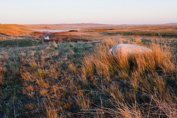 Grasslands NP-0196